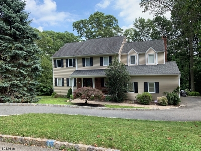 Randolph Twp. Single Family Home For Sale: 32 Bonnell Ln
