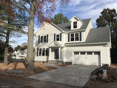 New Providence Boro Single Family Home For Sale: 16 6th St