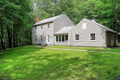 Randolph Twp. Single Family Home For Sale: 1523 Sussex Tpke