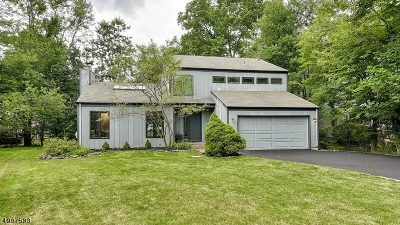 Essex County, Morris County, Union County Single Family Home For Sale: 10 Arbor Court