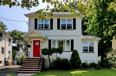 Cranford Twp. Single Family Home For Sale: 16 Locust Dr