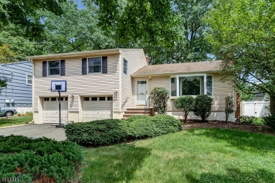 Springfield Twp. Single Family Home For Sale: 15 Garden Oval