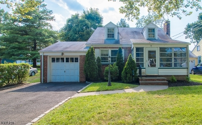 Springfield Single Family Home For Sale: 30 Meisel Ave