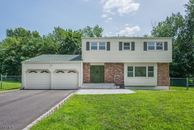 Edison Twp. Single Family Home For Sale: 2 Country Ln