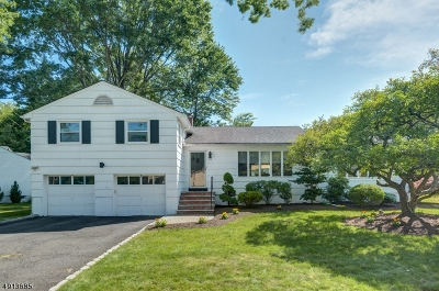 Springfield Single Family Home For Sale: 39 Garden Oval