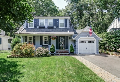 Millburn Twp. Single Family Home For Sale: 73 Stony Ln