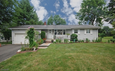 East Hanover Twp. Single Family Home For Sale: 13 Christine Dr