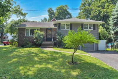 Montclair Twp. Single Family Home For Sale: 45 Wildwood Ave