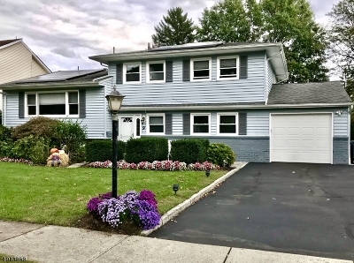 Springfield Twp. Single Family Home For Sale: 9 Hemlock Ter