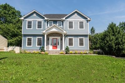 Clark Twp. Single Family Home For Sale: 492 Raritan Rd