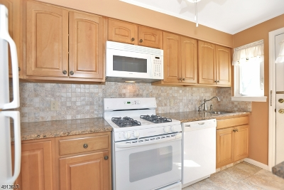 CRANFORD Condo/Townhouse For Sale: 24b Parkway Vlg