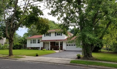 East Brunswick Twp. Single Family Home For Sale: 4 Jean Rd