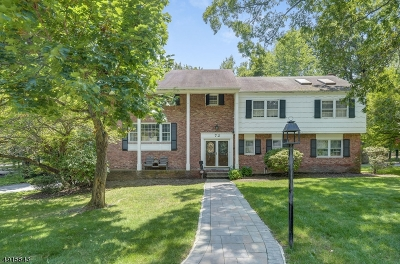 Springfield Single Family Home For Sale: 72 Green Hill Rd