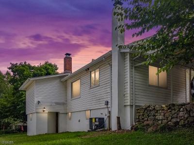 Denville Twp. Single Family Home For Sale: 41 Shawger Rd