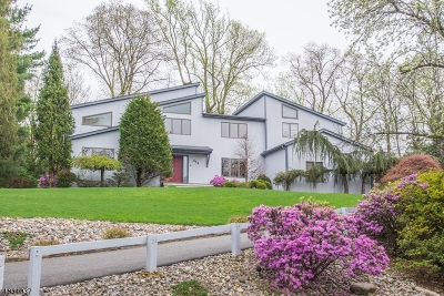 Denville Twp. Single Family Home For Sale: 6 Sky Top Dr
