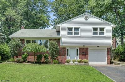 Springfield Twp. Single Family Home For Sale: 95 Beverly Rd