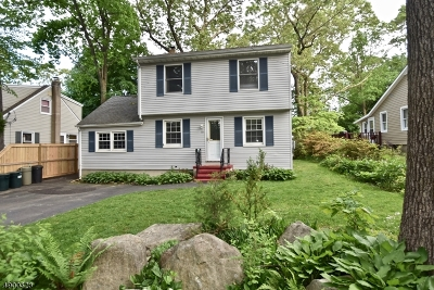 Denville Twp. Single Family Home For Sale: 10 Iroquois Trl