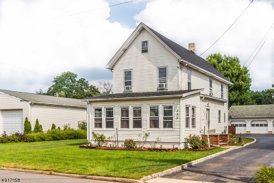 Edison Twp. Single Family Home For Sale: 286 Central Ave