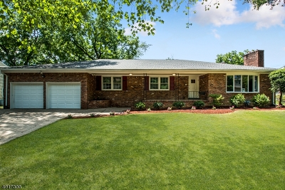Springfield Twp. Single Family Home For Sale: 4 Shadowlawn Dr