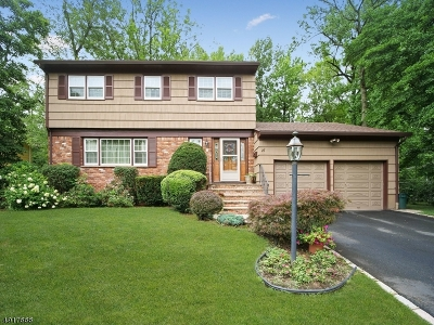 Clark Twp. Single Family Home For Sale: 27 St Germain Dr