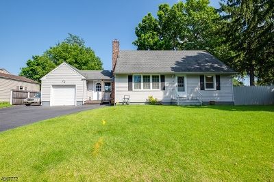 Roxbury Twp. Single Family Home For Sale: 14 Chesler Sq