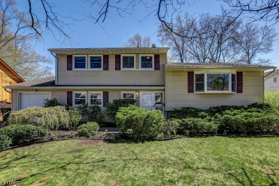 Springfield Twp. Single Family Home For Sale: 29 Cypress Ter