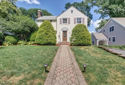 Springfield Twp. Single Family Home For Sale: 16 Park Ln