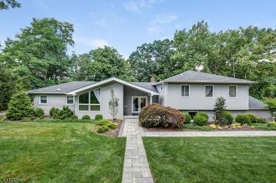 Livingston Twp. Single Family Home For Sale: 41 Cornell Dr