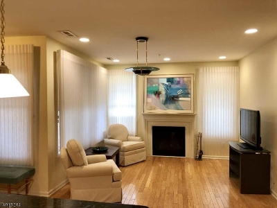 Livingston Twp. Condo/Townhouse For Sale: 5108 Pointe Gate Dr