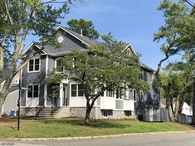 Livingston Twp. Single Family Home For Sale: 11 Montgomery Rd