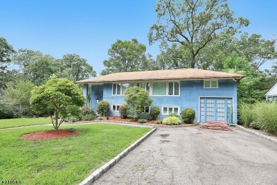 West Orange Twp. Single Family Home For Sale: 25 Birchwood Ave