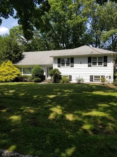 Millburn Twp. Single Family Home For Sale: 8 Shelley Rd