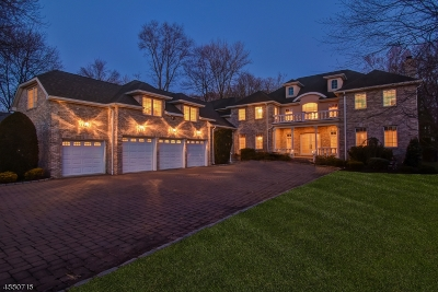 Florham Park Boro Single Family Home For Sale: 48 Cathedral Ave