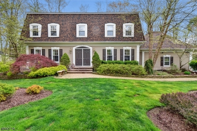 Randolph Twp. Single Family Home For Sale: 19 Red Barn Ln