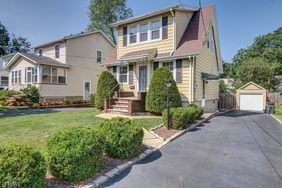 Springfield Twp. Single Family Home For Sale: 13 Remer Ave