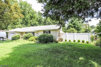 Edison Twp. Single Family Home For Sale: 31 Williams Rd