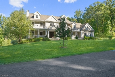 Randolph Twp. Single Family Home For Sale: 10 Waterfall Dr