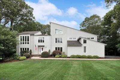 Denville Twp. Single Family Home For Sale: 38 Copeland Rd