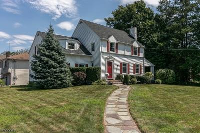 Garwood Boro Single Family Home For Sale: 707 Center St
