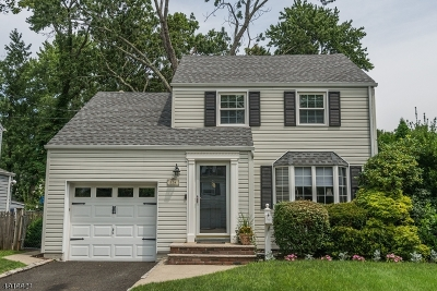 Springfield Twp. Single Family Home For Sale: 134 Henshaw Avenue