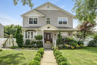Hillside Twp. Single Family Home For Sale: 228 Conant St