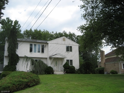 East Hanover Twp. Single Family Home For Sale: 59 Grove Ave