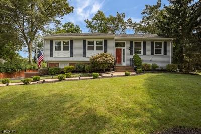 Single Family Home For Sale: 23 Cedar Ln