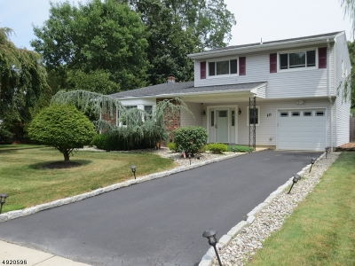 East Brunswick Twp. Single Family Home For Sale: 10 Dunston Dr