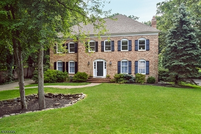 Summit City Single Family Home For Sale: 42 Woodmere Dr