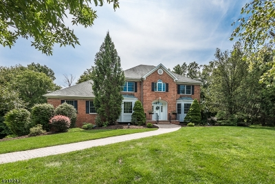 Randolph Twp. Single Family Home For Sale: 8 Tranquility Pl