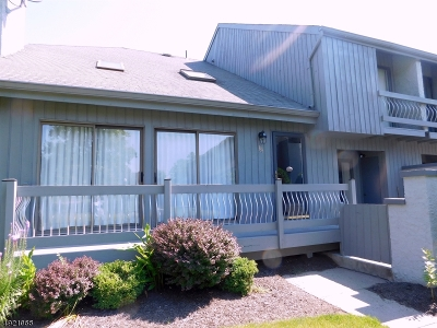 Edison Twp. Condo/Townhouse For Sale: 183 Linda Ln
