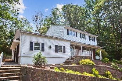 Mountainside Boro Single Family Home For Sale: 1041 Summit Ln