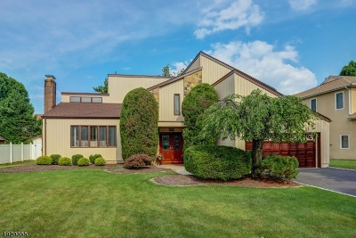 Springfield Twp. Single Family Home For Sale: 100 New Brook Ln