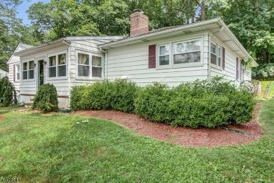 Livingston Twp. Single Family Home For Sale: 287 E Cedar St